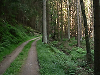 Wanderweg, Dreisbachtal